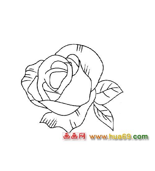花卉简笔画 玫瑰花4