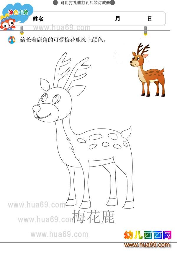 幼儿画画涂色卡:可爱梅花鹿│可打印涂色卡