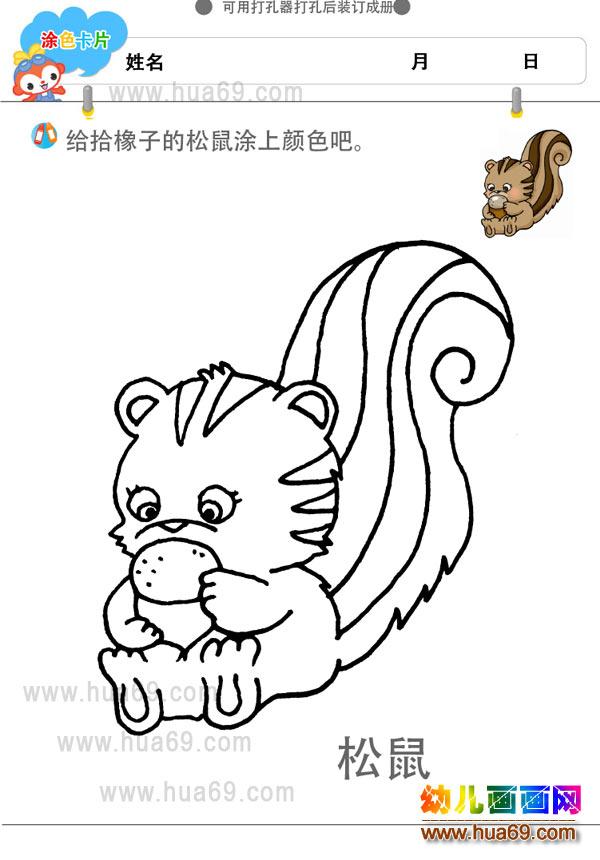 大尾巴松鼠│儿童画画涂色卡