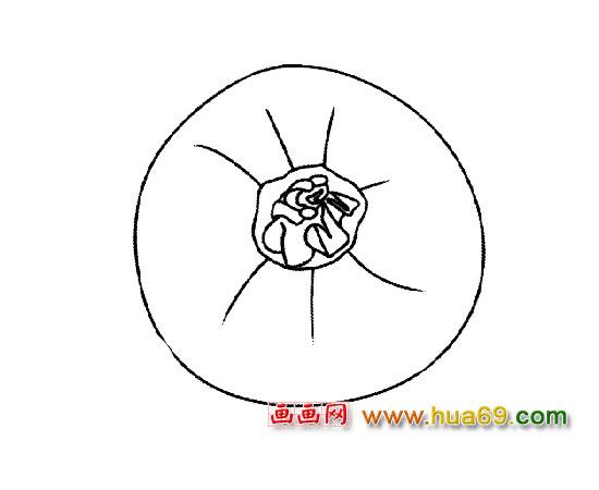 漂亮的西红柿简笔画5